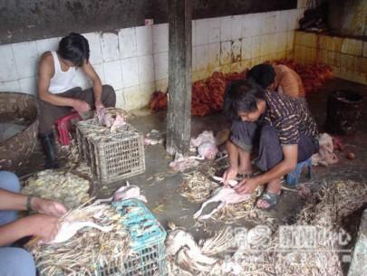 http://l-humanite.cowblog.fr/images/h2017080731253642810.jpg